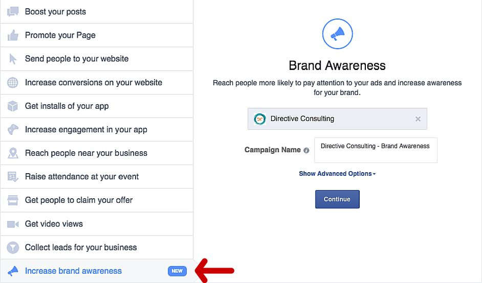 Selecting your Facebook ad Campaign