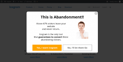Image showing an example of a pop-up.