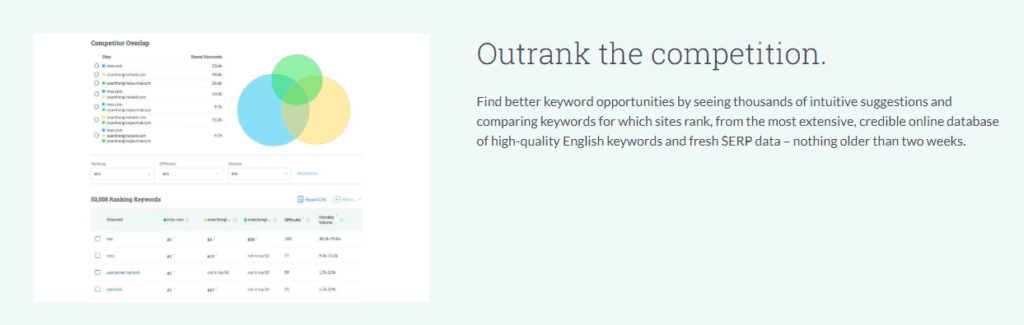 moz competitor tool